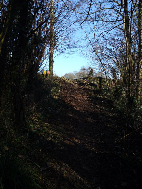 Climbing out of copse and heading to Maddoxford lane