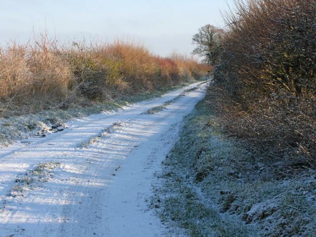 The Lane, Hinton Marsh