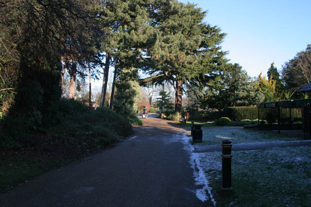 Looking into Bridgford Park