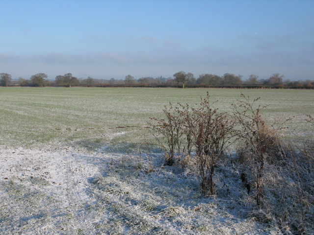 Winter scene on Hinton Marsh