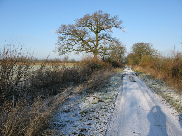 Looking NW towards the northern end of The Lane