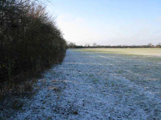 Hedgerow field boundary from bridleway, Hinton Marsh