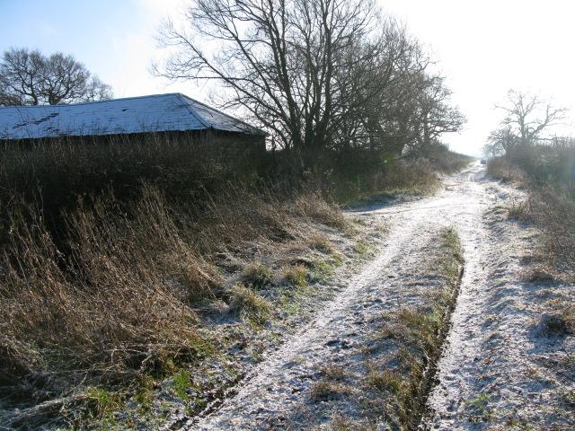 Where bridleway becomes The Lane, Hinton Marsh