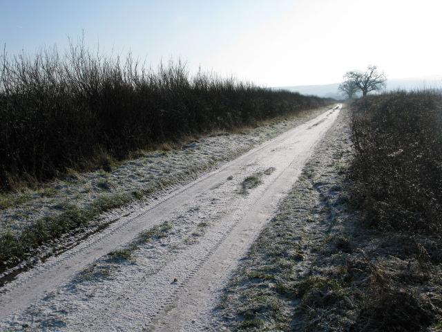 View along The Lane, Hinton Marsh