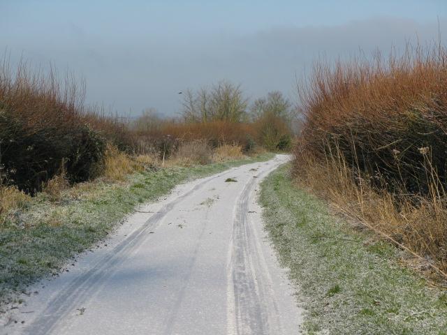 View along The Lane near Hinton Copse