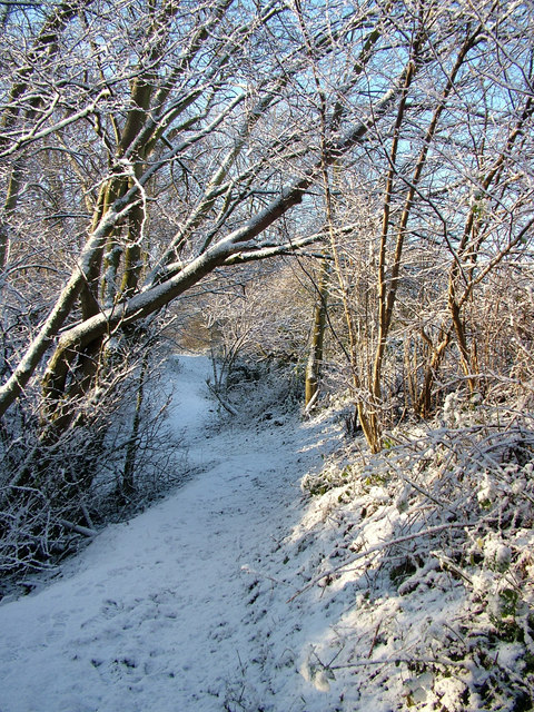 Snowy Path off Ouchthorpe Lane, Newton Hill