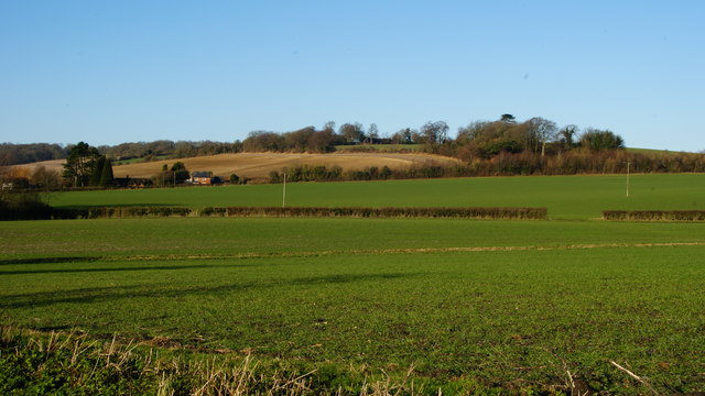 View From Gid Lane, Upper Froyle (1)