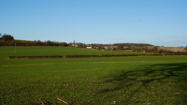 View From Gid Lane, Upper Froyle (2)