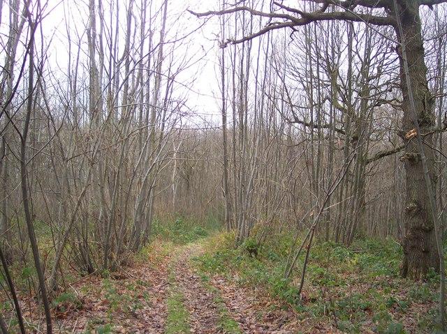 Footpath near Penny Pot Lane