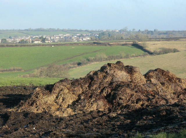2010 : Muck heap west of Wick Lane