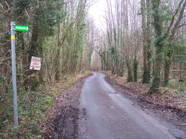 Penny Pot Lane in Denge Wood