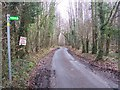 TR0952 : Penny Pot Lane in Denge Wood by David Anstiss