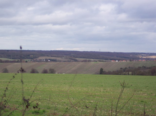 View of Chartham Downs and Shalmsford Street