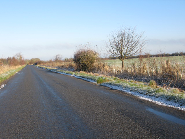 The road between Botswicky Copse and Lower Farm