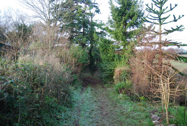Footpath to Golsoncott from New Barn