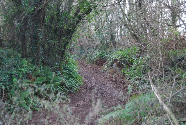 Track near New Barn