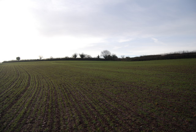 Field near Blindwell Lane