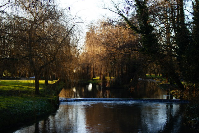 River Wey, Near Mill Court, Hampshire