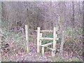 TR1052 : Stile near Denge Wood by David Anstiss