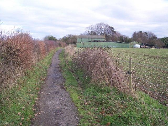Track to Garlinge Court Farm
