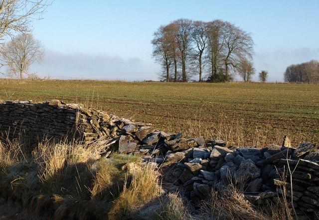 Damaged wall near Sawcombe Farm