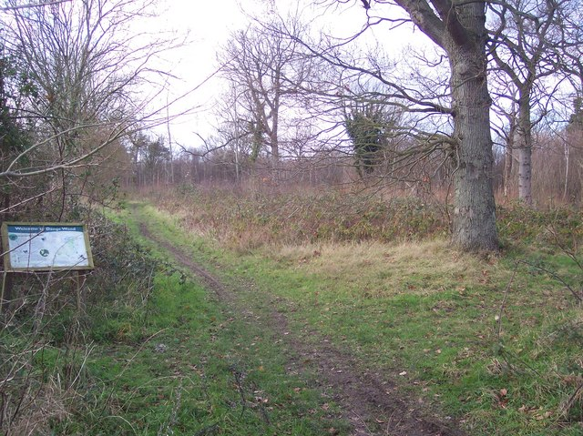 Footpath junction in Denge Wood, near Garlinge Green