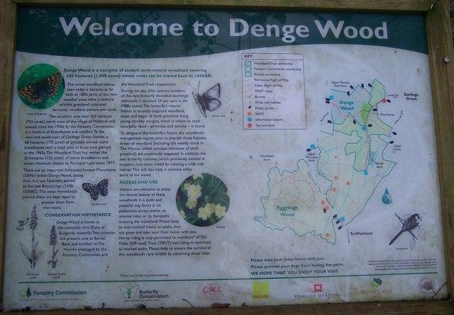 Denge Wood Information Board