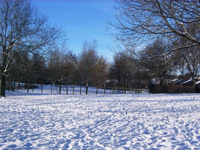 Snow-laden Park, Guisborough (view west)