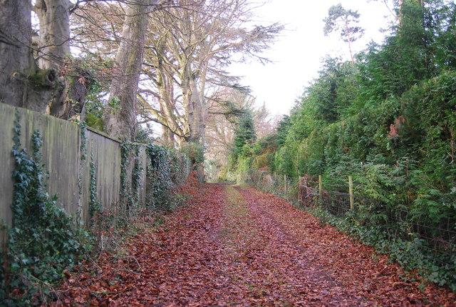 Track near Croydon Hall