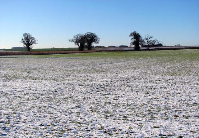 Frozen fields east of Bungay Road