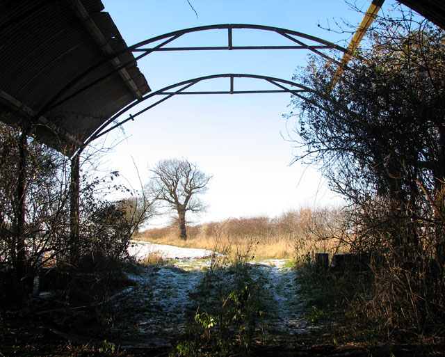 View from dilapidated farm shed