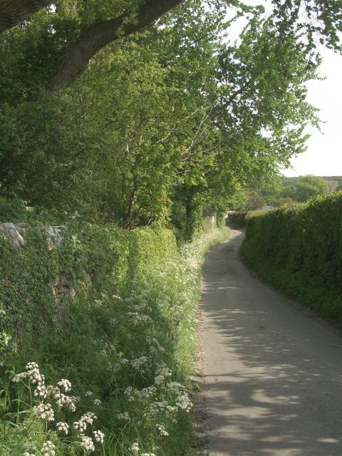 Country lane approaching Merthyr Mawr