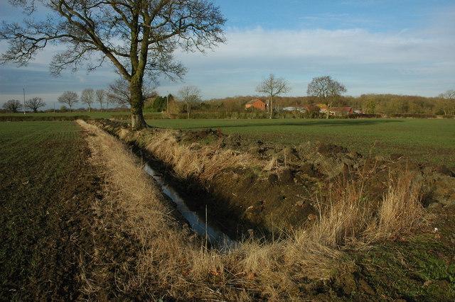 Ditch near Gannow Farm