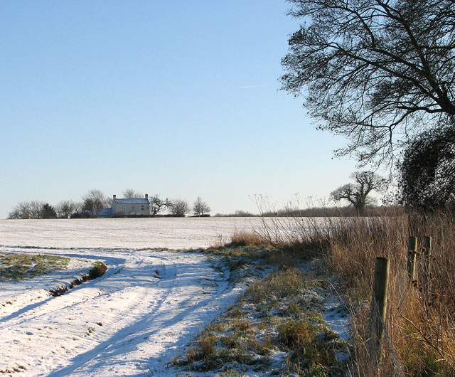 Snowy farm track south of Hales Hall