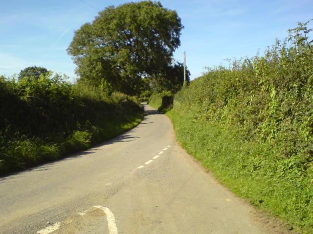 Lower Lane, Carew