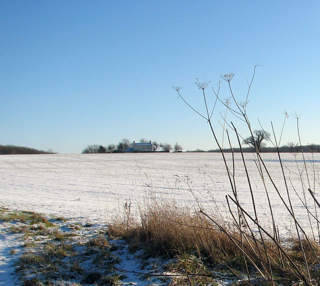Snow-covered field south of Hales Hall