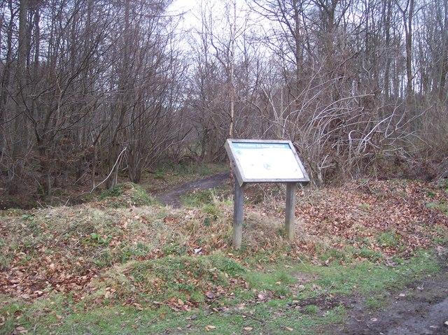 Information Board for Denge Wood