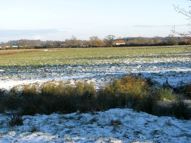 View across Hales Green Common on a cold January day