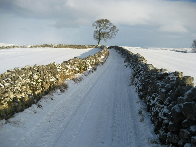 Thorpe Lane in Winter