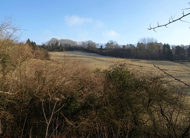 Across the valley of the Marlees Brook