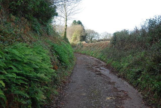 Narrow lane west of Felon's Oak