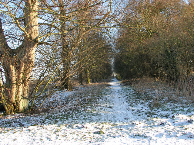 Path to Hales Green Common