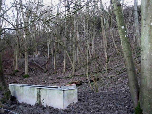 Old Chalk Pit near Little Danny