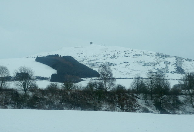 View towards Kinpurney Hill from north of Newtyle