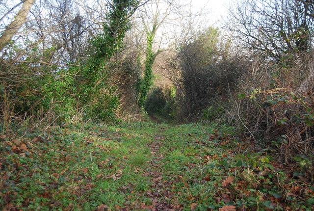Stringlands Lane