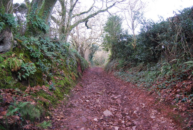 Sunken lane west of Felon's Oak