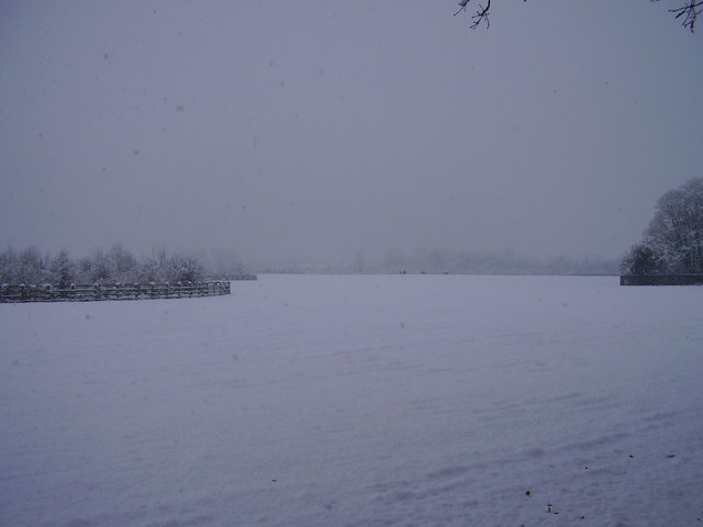 Cantley hall parkland
