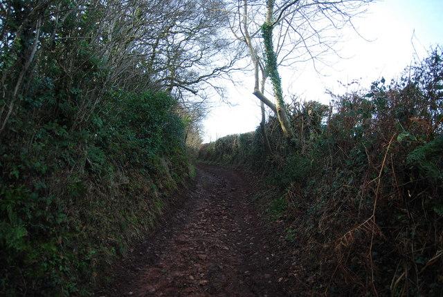 Sunken lane west of Felon's Oak