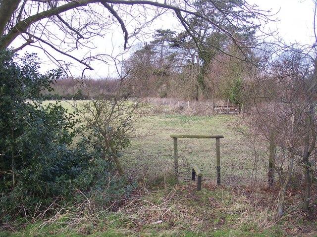 Stile into a field near Buckholt Farm