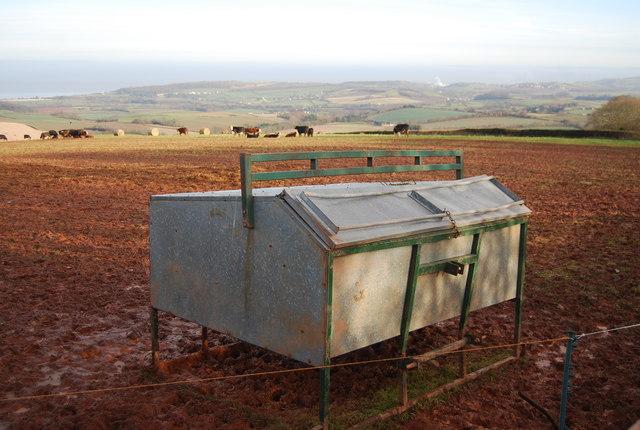 Cattle feeding trough